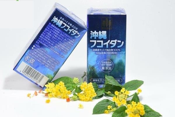 thuốc okinawa fucoidan nhật bản